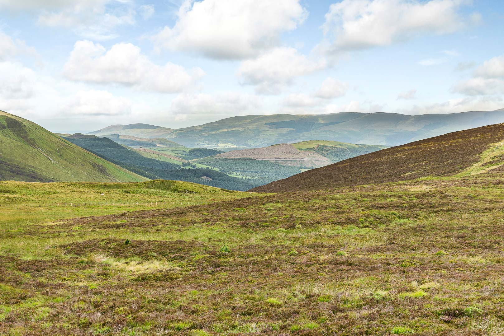 Pumlumon Mountain Range, Cambrian Mountains