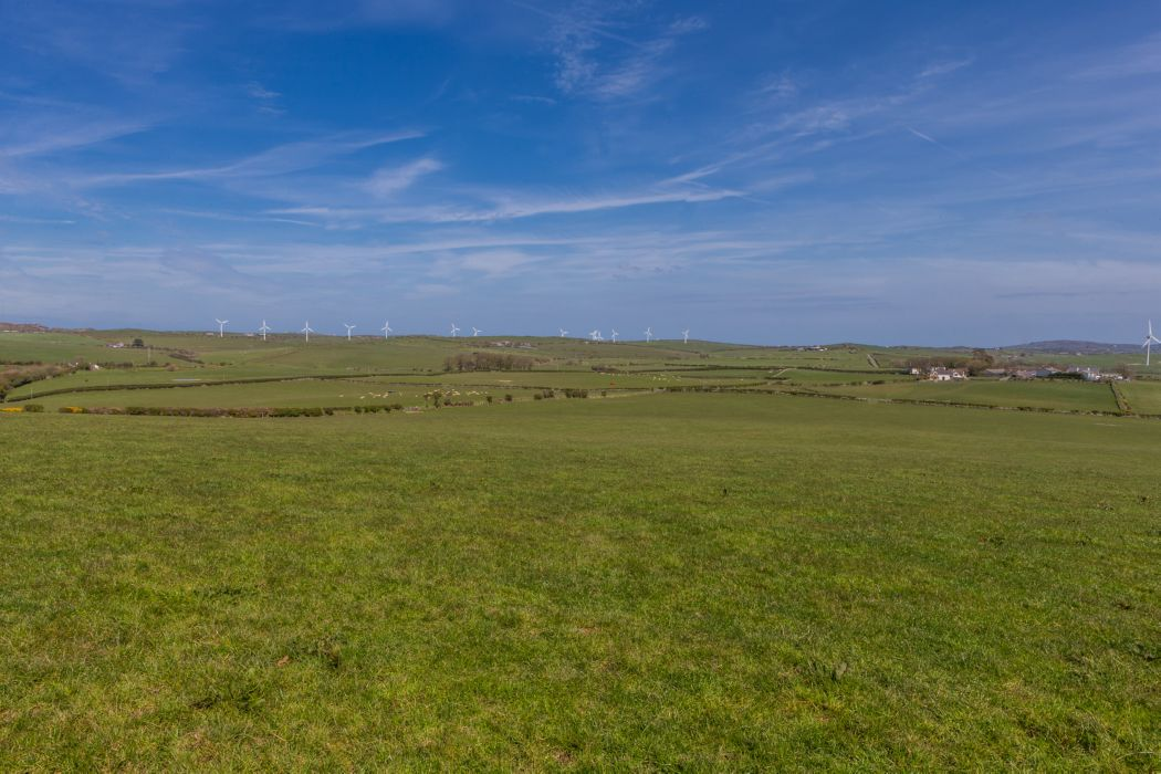 approximately 300 acres (121 hectares) of prime quality land down to pasture