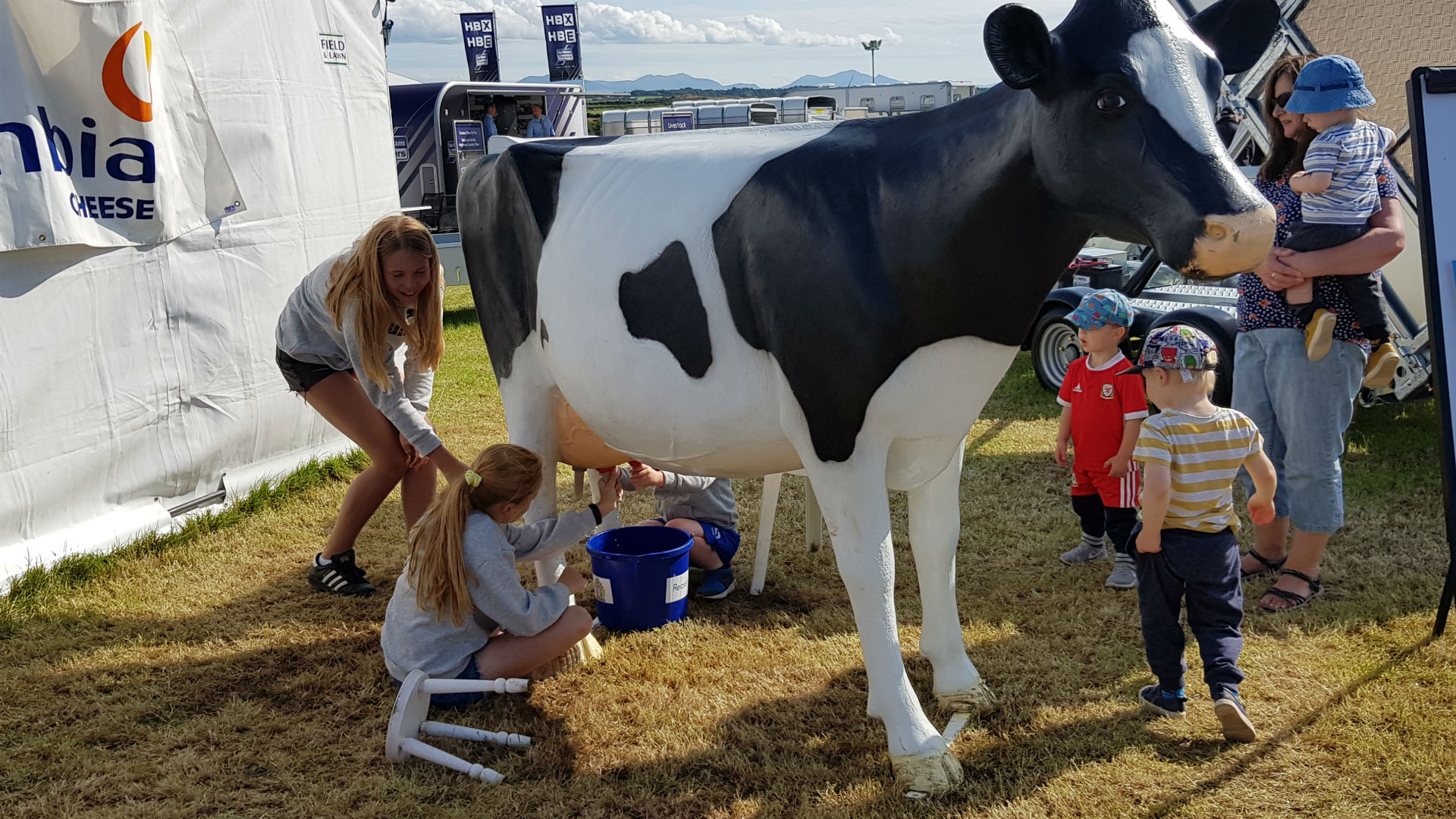 2019 Merioneth County Show, Harlech – We will be there