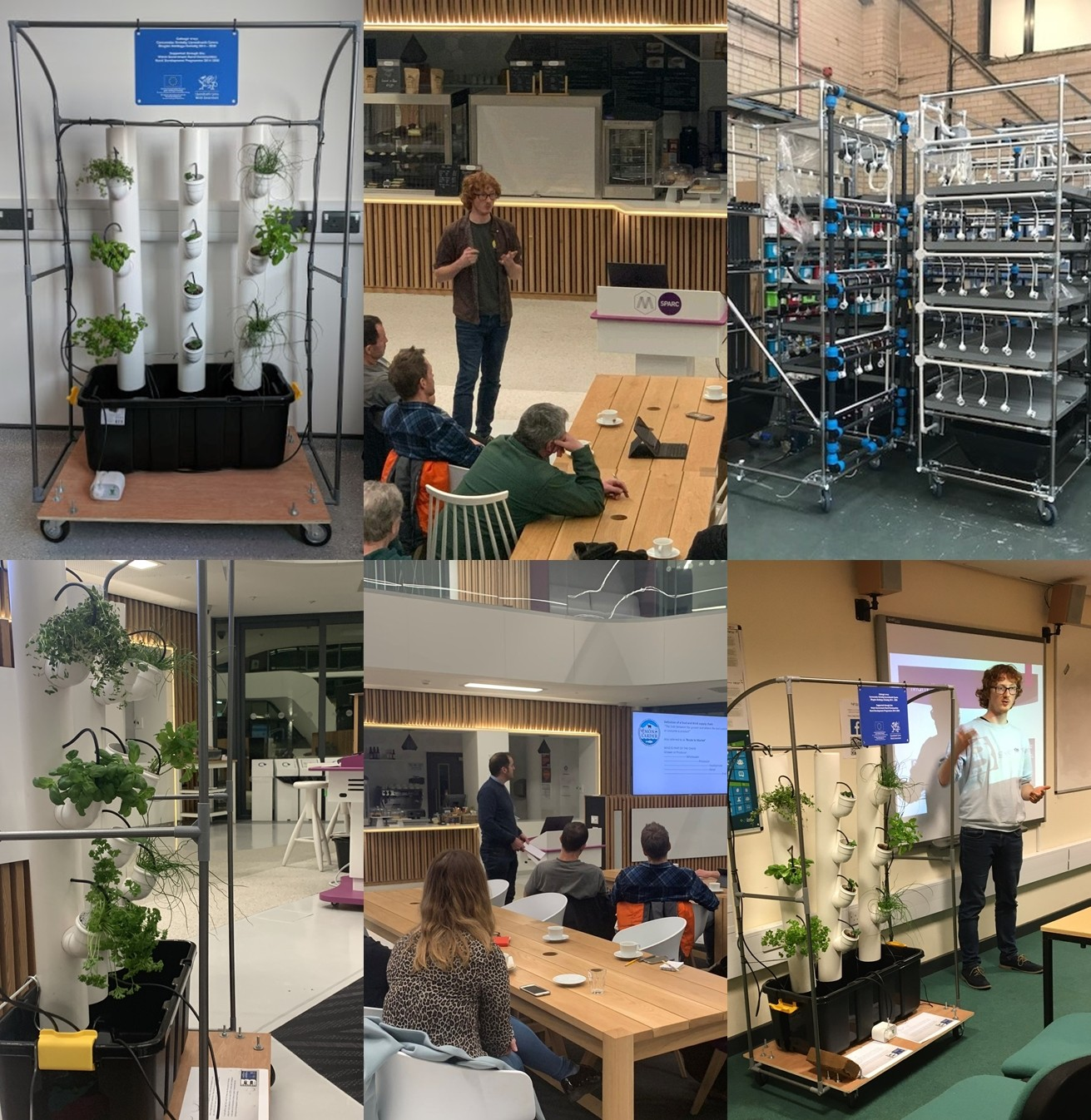 Tech Tyfu – Vertical Farming in North Wales